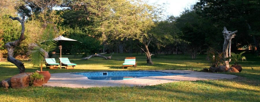 Elephant Valley Lodge - Swimming pool among the trees