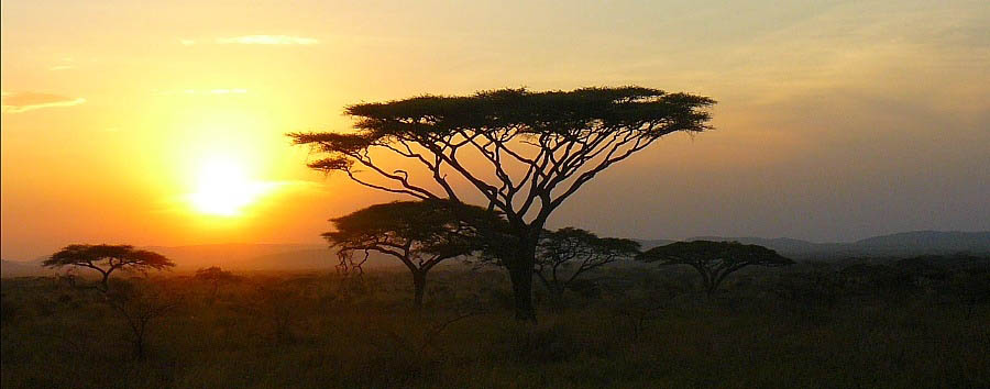 Tanzania al top - Tanzania Serengeti Plains View