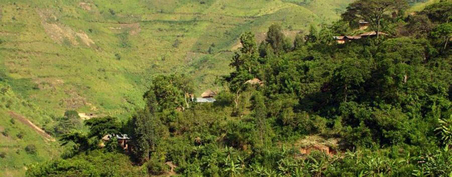 The undiscovered pearl of Africa - Uganda Sanctuary Gorilla Forest Camp, Panorama