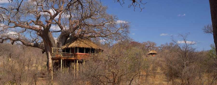 Tarangire Treetops - View over the lodge