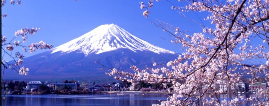Kyoto, Mt. Fuji e Tokyo - Japan Mt. Fuji in spring