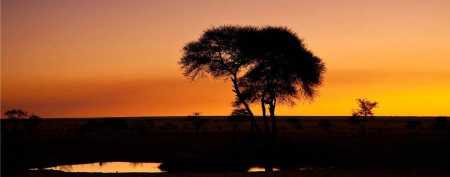 Classic Namibia - Namibia Sunset in Etosha National Park