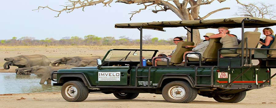 Zimbabwe - Elephant viewing by 4x4 © Imvelo Safari Lodges
