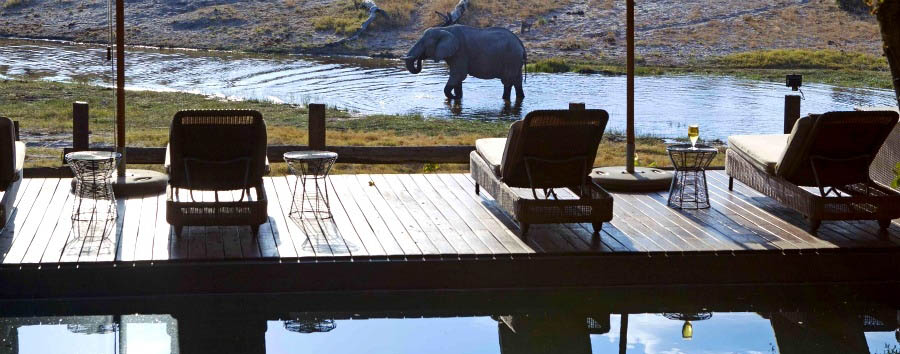 Savute+Safari+Lodge+-+Pool+Loungers