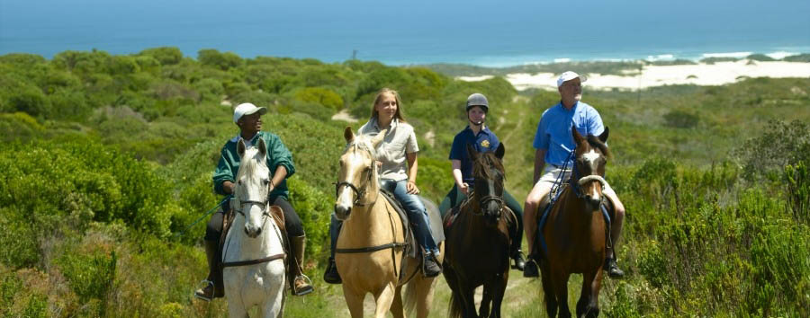 Grootbos+Villa+-+Horse+riding+in+the+Grootbos+Nature+Reserve