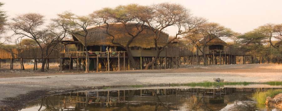 Onguma Treetop Camp - Camp exterior
