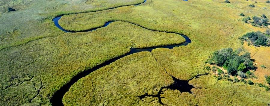 Botswana, smeraldo d'acqua - Botswana Okavango Delta, Aerial View