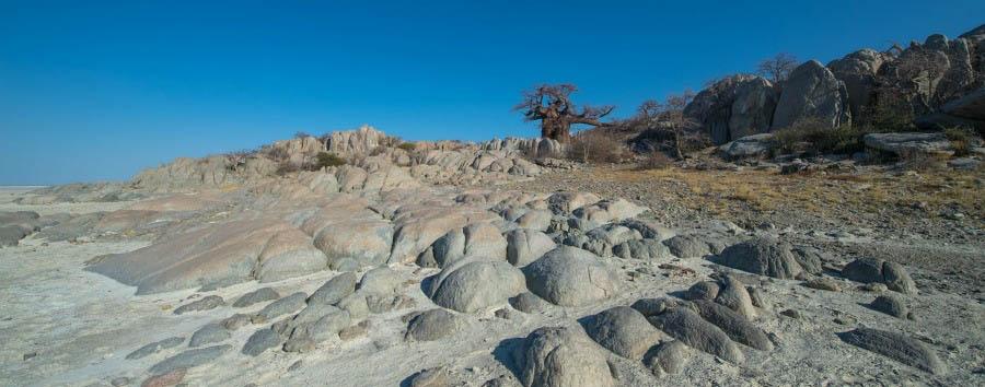 Botswana Wild Parks - Botswana Makgadikgadi Pans