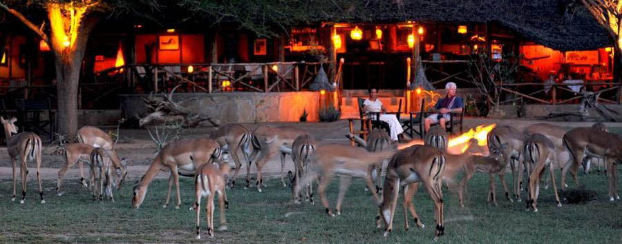 Satao Camp - The lounge and restaurant