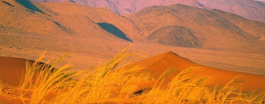 Namibia, canyon e silenzi - Namibia Namib Desert Landscape