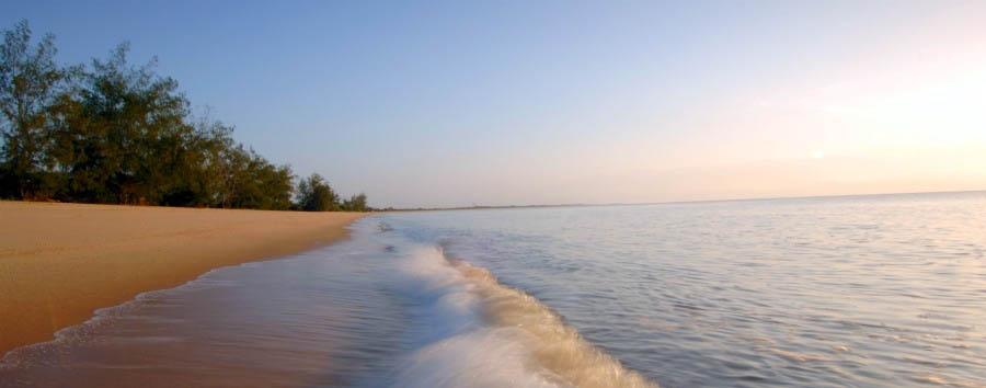 Wonders of Saadani - Tanzania Saadani National Park beach view