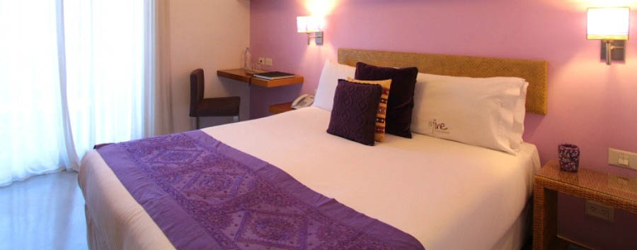 Hotel Mine - Superior Room - Purple
