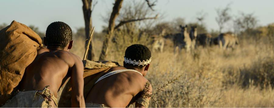 Viaggio nella terra dei San  - Botswana San People and Zebras