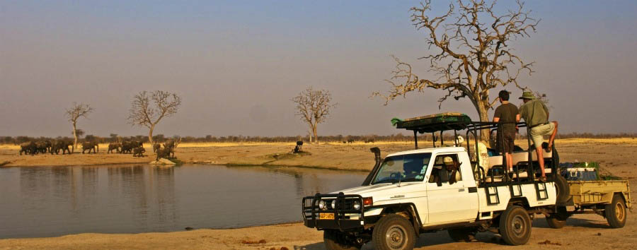 Zimbabwe - Game Drive in The Hwange National Park