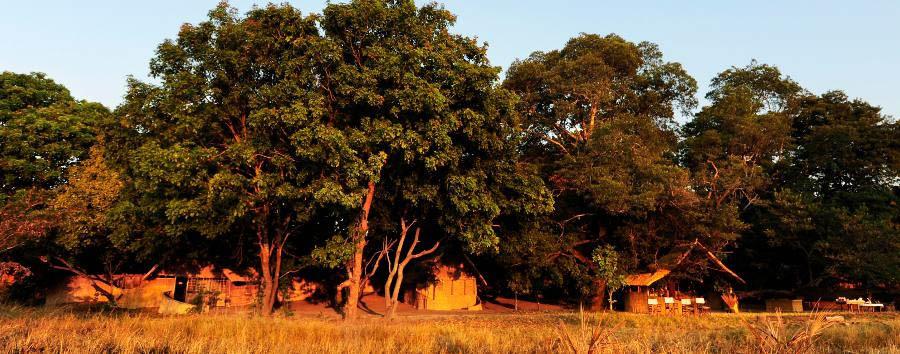 Luwi Bush Camp -