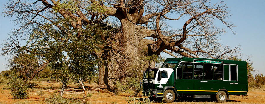 La croce del Sud - Botswana The Green Truck Under a Baobab