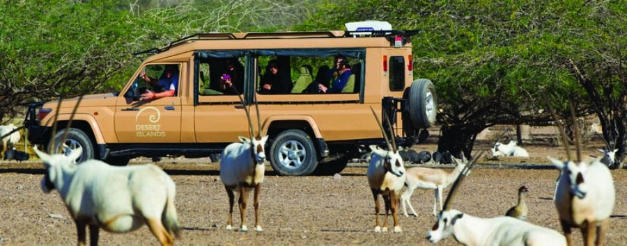 The Unconventional Emirate - Abu Dhabi Sir Bani Yas Island - Nature & Wildlife Drives