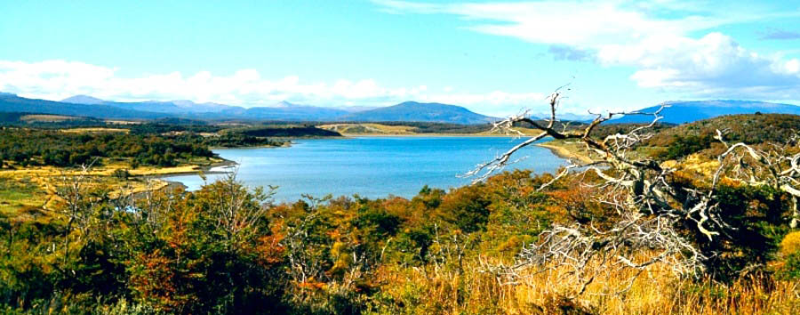 Adventure at the end of the world - Argentina Tierra del Fuego National Park Landscape