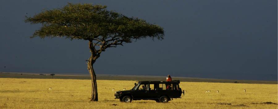 Sala's Camp - 4x4 Safari