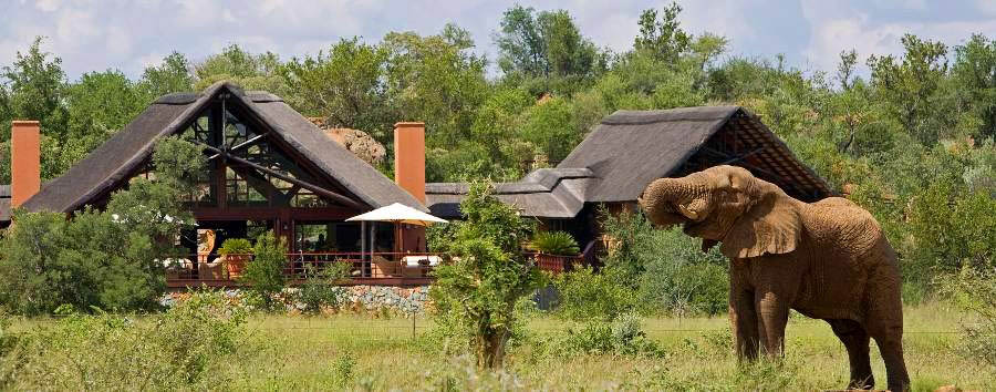 Mateya Safari Lodge - View from the lodge