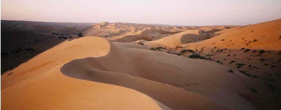 Easy Oman - Oman Wahiba Sands Desert