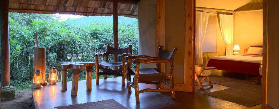 The undiscovered pearl of Africa - Uganda Sanctuary Gorilla Forest Camp, Luxury Tent Bedroom