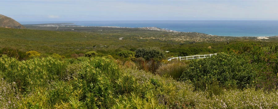 South Africa - Amazing View of Grootbos Private Game Reserve