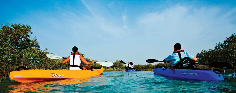 The Unconventional Emirate - Abu Dhabi Sir Bani Yas Island - Kayaking between the mangroves