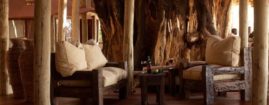 Tarangire Treetops - Main lounge