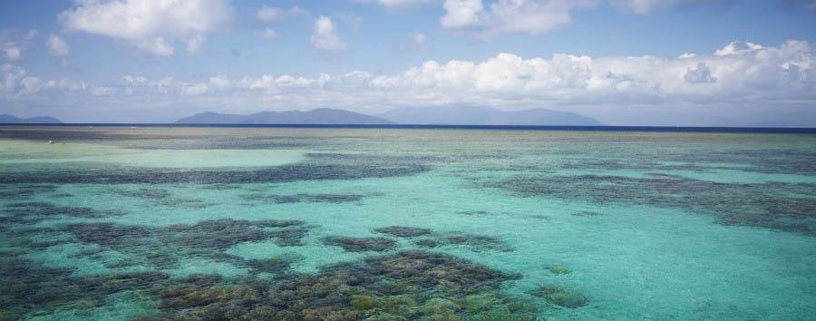 Mosaico australiano: Cairns - Australia Queensland, Great Barrier Reef, Green Island © Maxime Coquard/Tourism Australia