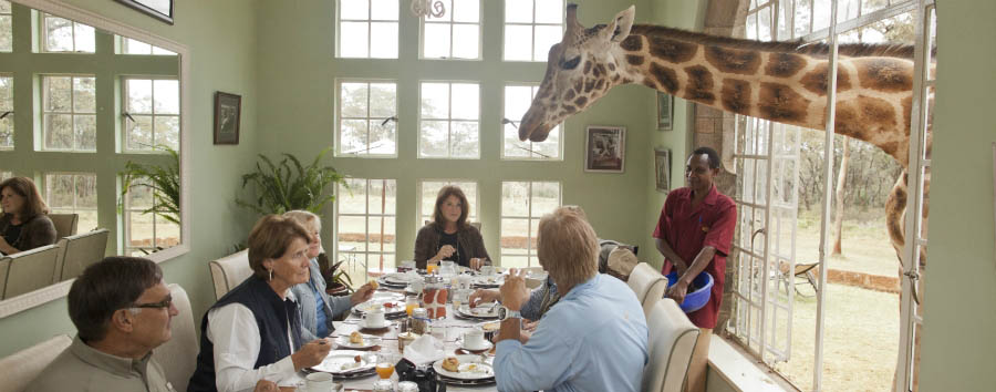 Giraffe Manor - Feeding Breakfast