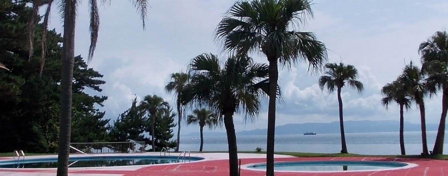 Ibusuki Iwasaki Hotel - Pools and palm trees
