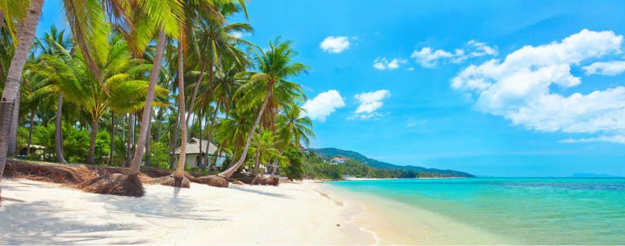 Koh Samui à la carte - Koh Samui tropical beach Bang Po © Ozerov Alexander/Shutterstock