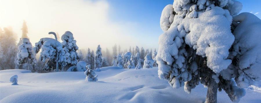 Rovaniemi à la carte - Finland Lapland, Winter Landscape © Vastavalo/Marko Junttila/Visit Finland