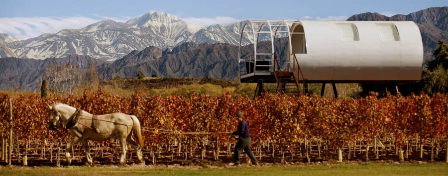 Design Your Wine - Argentina Entre Cielos, Plough Time in the Wineyards