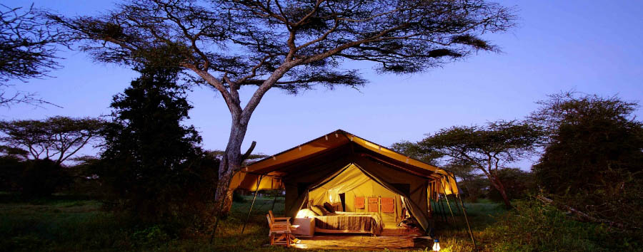 Serengeti Safari Camp - View by Night