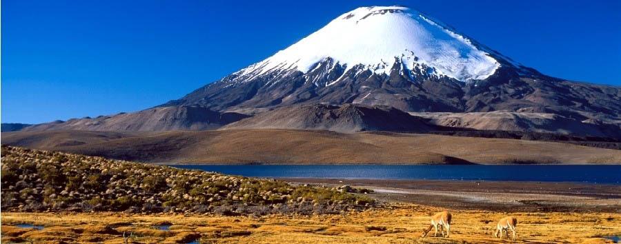 Cile, lungo la Cordigliera - Chile Salar de Atacama, Parinacota volcano and Lake Chungará