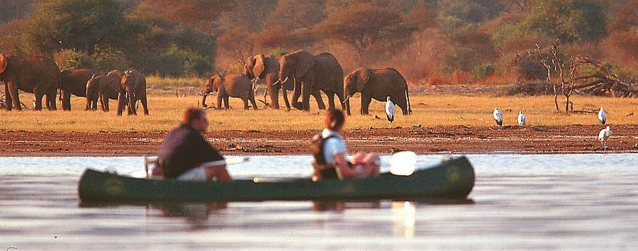 Mosaico Tanzania - Tanzania Canoing on Lake Manyara