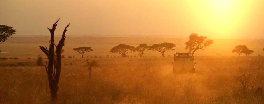 Discovering Tanzania - Tanzania Sun Shining in Tarangire National Park