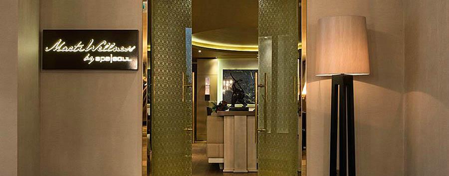 Marti Istanbul Hotel - Martı Wellness by Spa Soul