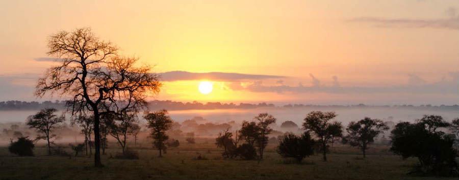 Sudafrica: Riserva di Sabi Sabi - South Africa Sabi Sands Landscape