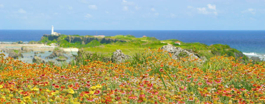 Mare a Okinawa: Miyakojima - Japan Margaret Fields near HigashiHenna Cape, Miyakojima © EarthScape ImageGraphy/Shutterstock
