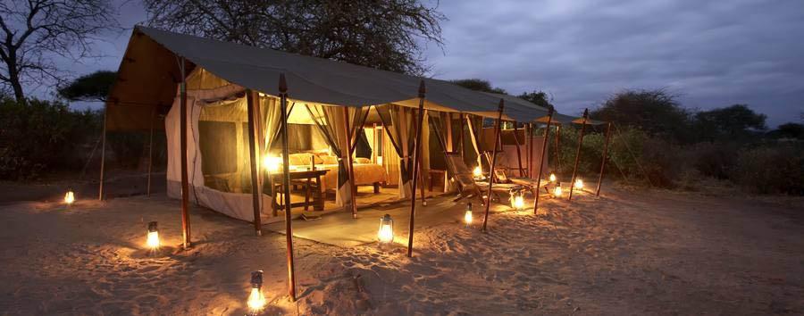 Oliver's Camp -