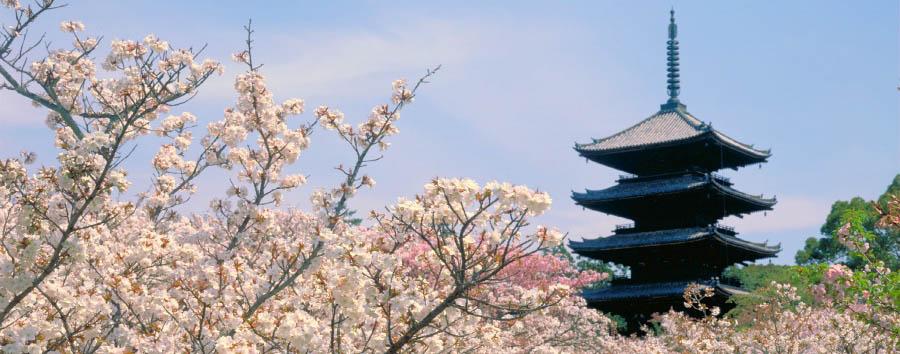 Giappone, Ryokan Experience - Japan Kyoto, Kofuku-ji pagoda