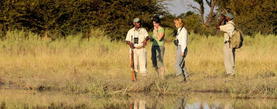 Footsteps across the Delta - Walking safari