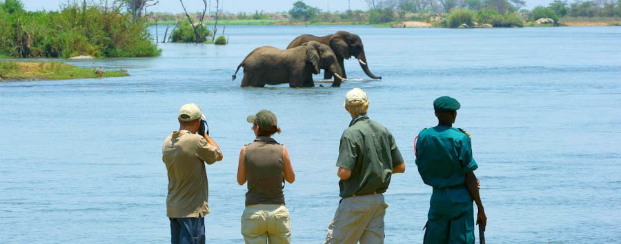 Sud Malawi: safari e foreste - Malawi Walking safari in the Majete Wildlife Reserve