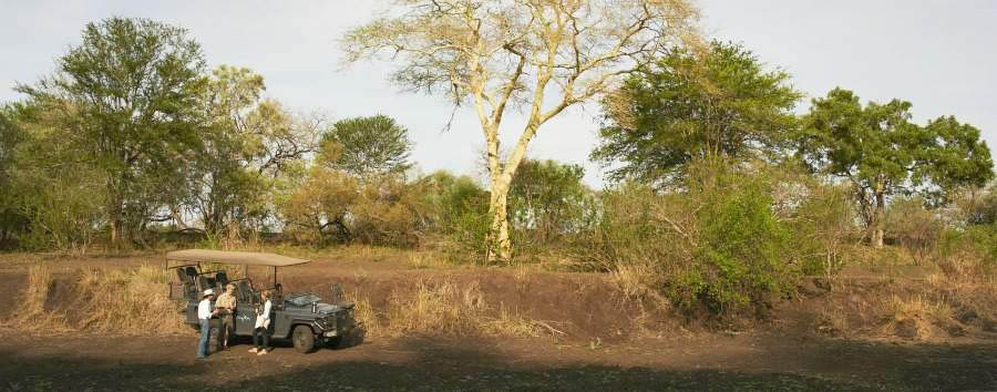 South Africa Luxury Fly-in Safari - South Africa Game Drive in The Kruger National Park