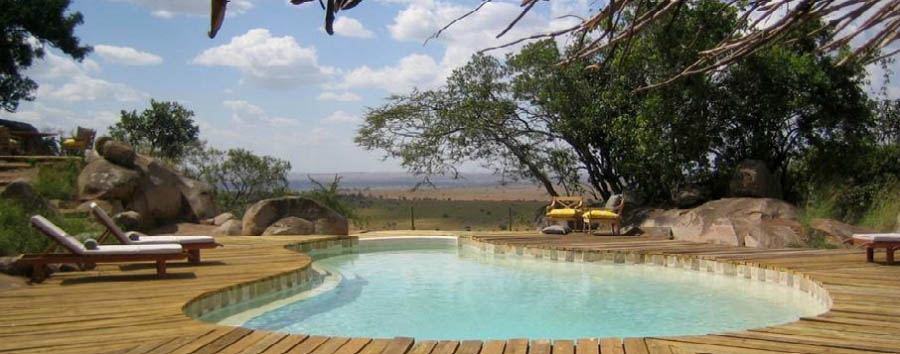Lamai Serengeti - Lodge pool