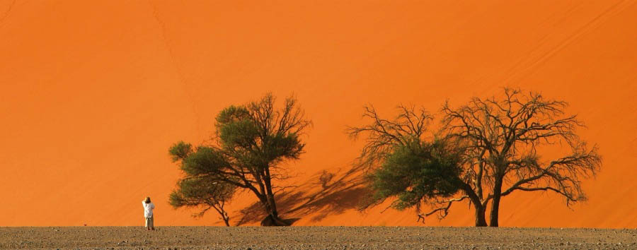 Namibia - Sossusvlei, Staring at The Dune 45