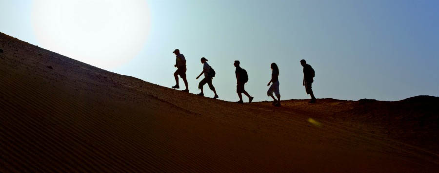 The Unconventional Emirate - Abu Dhabi Sir Bani Yas Island - Desert Walk
